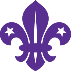 Scout Group Challenges