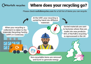 PDF graphic explaining where your recycling in Norfolk goes.